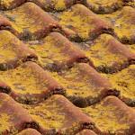 Als u in een bosrijke omgeving woont, is dakpannen reinigen noodzakelijk.©Kalle Kolodziej - Fotolia