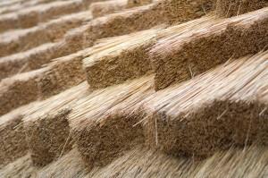 Voor rieten dakbedekking zijn bepaalde eisen gesteld aan de kwaliteit van het riet.©Michael Tieck - Fotolia